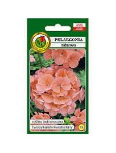 Pnos Семена Пеларгонии Крупноцветной Pelargonia Rabatowa (коричнивая) 10шт
