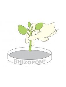 RHIZOPON AA, 1% средство для укоренения, 100г